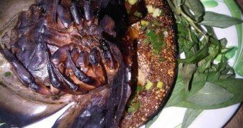 Sam biển - Món ăn gây thương nhớ của đất Quảng Ninh