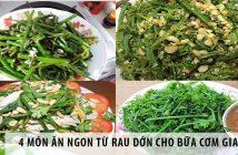 4 món ăn ngon từ rau dớn cho bữa cơm gia đình