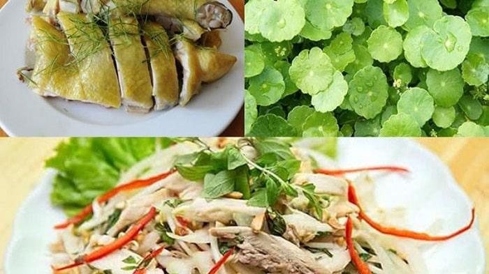 Món nộm rau má thịt gà hấp dẫn