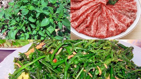 rau tầm bóp xào thịt bò