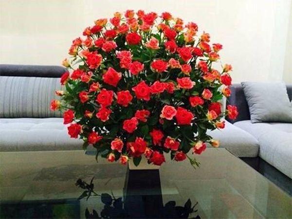 Hoa hồng được cắm theo kiểu mái vòm