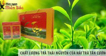 Đánh giá chất lượng trà Thái Nguyên của Hải Trà Tân Cương